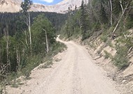 Forest Road 123 - Tushar Mountains