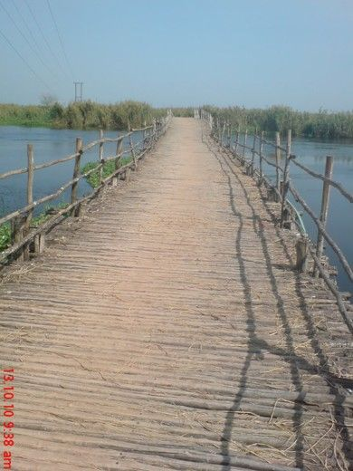 Kolleru Wood Bridge