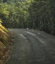 Mount Cheeseman Access Road
