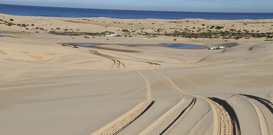 Stockton Beach 4wd Track